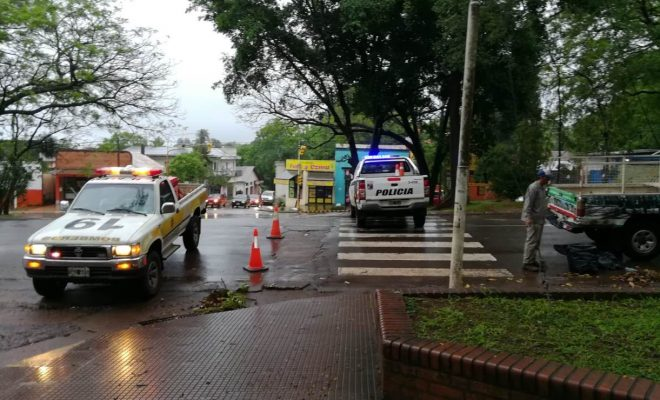 Gajo se desplomó sobre un vehículo en el que viajaban docentes a trabajar