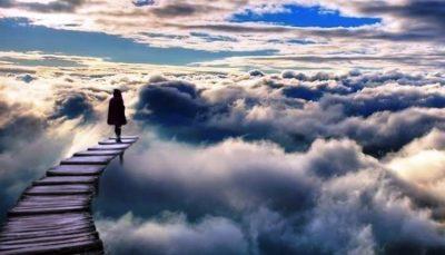 La inmortalidad del alma necesita información