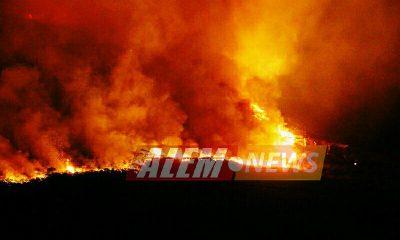 CELA logró restablecer el servicio a Cerro Azul luego de la quema de postes,CELA Alem,TRabajos,Incendio,Cerro Azul,Noticias,Alem,